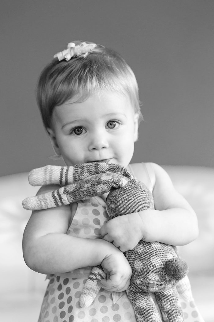 Traverse City Michigan Lifestyle Family Photographer