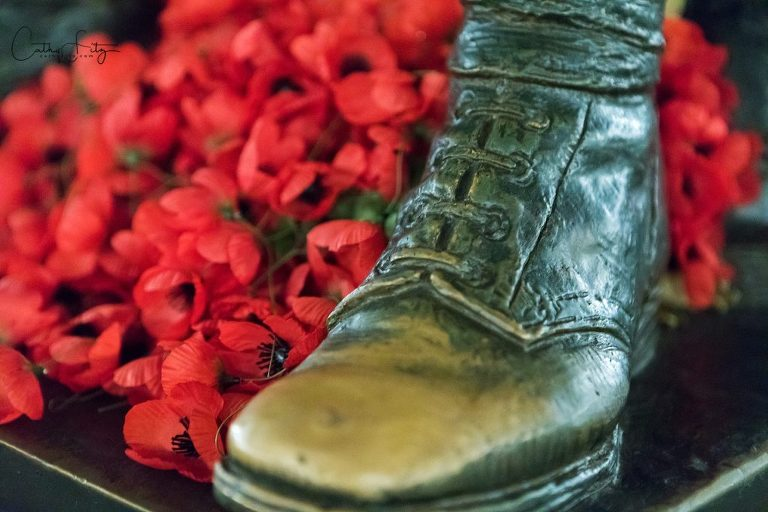 Memorial Day/Cathy Fitz Photography